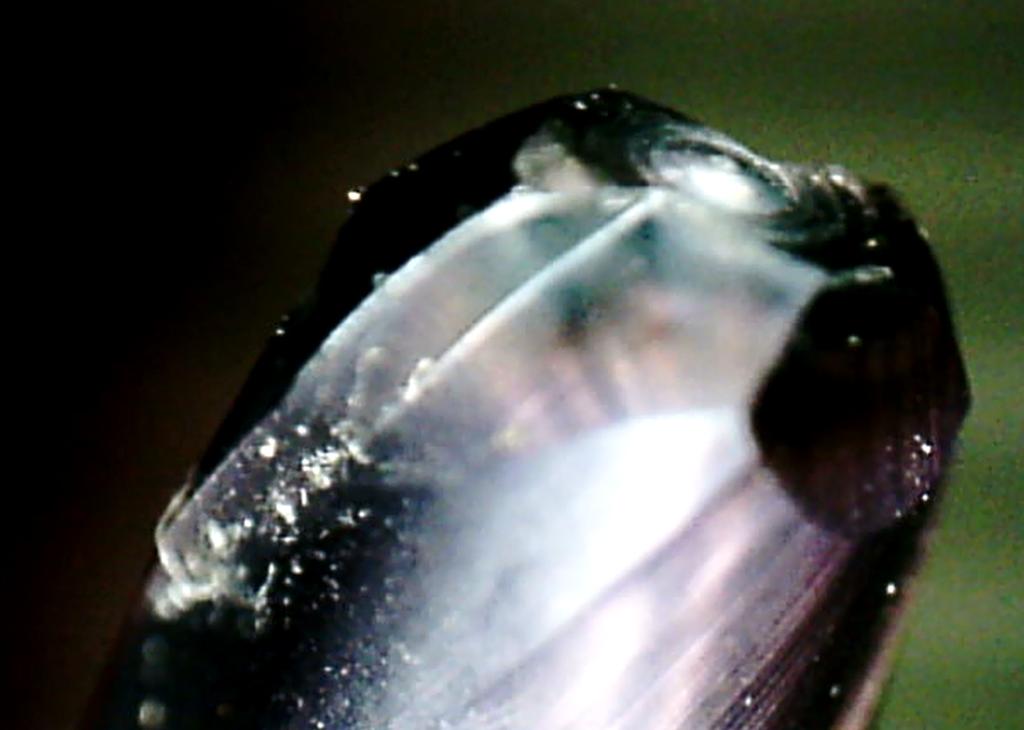 金型加工コンサルティングにおける側面が異常磨耗した小径ボールエンドミル